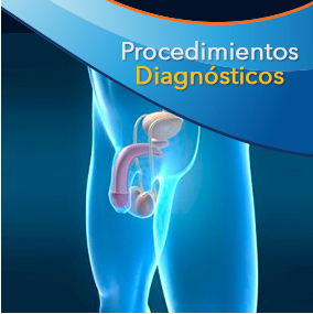 Urobosque Procedimientos Diagnosticos